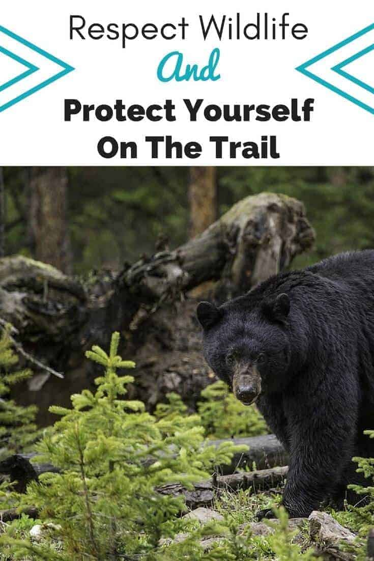respect wildlife and protect yourself on the trail