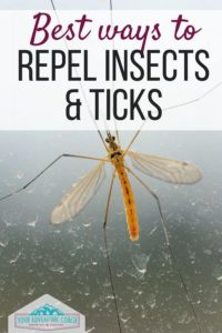 best ways to repel insects and ticks for hikers